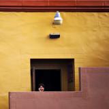 Boxed, Pacific Beach, San Diego, California, 2010