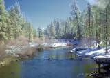 Lake Tahoe stream 2 IR Colour Composite.jpg
