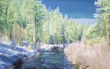 Stream near Lake Tahoe IR Colour Composite.jpg