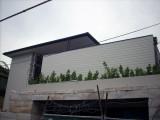 Watsons Bay custom copper gutters.JPG