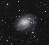 NGC300 LRGB 100 30 30 30