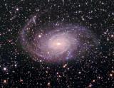 NGC6744 HaLRGB 75 675 165 155 135 RC BRC.jpg
