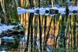 The Fairies' Pond 60