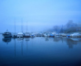 The boats sleep into a cocoon of fog....