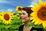 Sunflowers 60