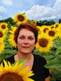 Sunflowers 69
