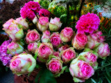 The little, deep joy of buying fresh flowers at a street market...