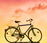 The Goddess Bike....
