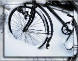 Shivering bicycle