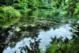 The Fairies' Pond 26