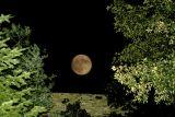 moon_photos