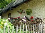 flower`s hut