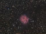 IC 5146 (Sh2-125)