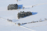 2009-01-06_153.jpg