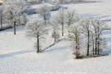 2009-01-10_242.jpg