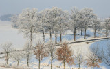 2009-01-10_252.jpg