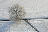 2009-01-10_310.jpg