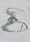 2009-01-10_318.jpg