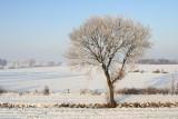 2009-01-10_356.jpg