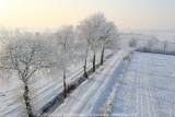 2009-01-10_357.jpg