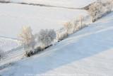 2009-01-10_359.jpg