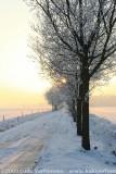 2009-01-10_420.jpg