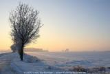 2009-01-10_422.jpg