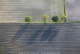 2009-05-21_152.jpg
