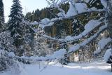 Kleinwalsertal - Winterwanderung Hörnlepass / Waldhaus