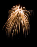 Backyard Fireworks 2009
