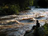 Solitude face à la rivière