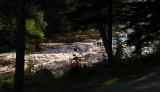 la rivière et ses remous