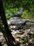 sous les arbres les rochers