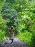 promenade en sous-bois