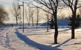 ski de fond au parc
