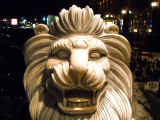Lion urbain