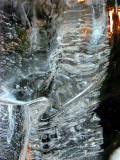 forme glacée
