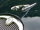 devant de Jaguar