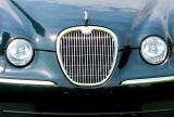regard de Jaguar