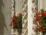 fleurs de pierre et  géranium en fleur