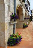 fleurs des arcades