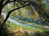 Ardèche à l'ombre