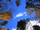 Le petit nuage blanc dans un ciel d'automne