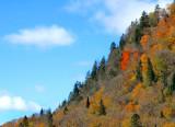 Profil d'automne