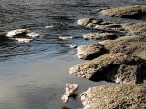 la côte rocheuse de la Chaudière