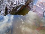 l'eau nuageuse