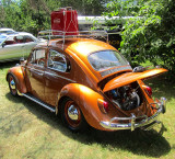 beetle orange