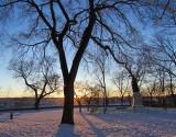 début d'hiver au parc Montmorency