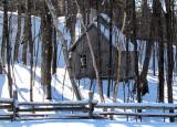 la cabane dans l'érablière