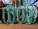 Les cordes vertes